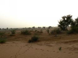 Coucher de soleil sur une dune de sable près de Gorom